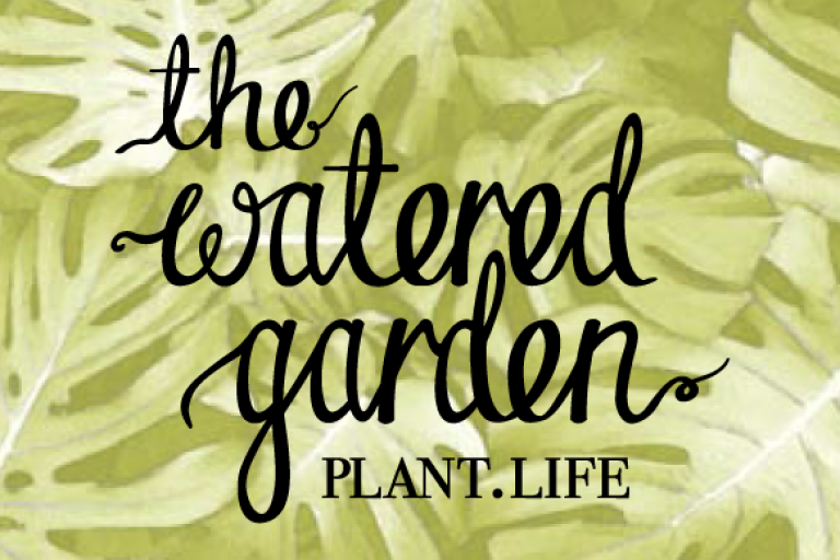 The Watered Garden Indoor Plants Green Fingered STENCIL logo brand design nature cheese plant